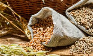 Простой рецепт самогона из пшеницы в домашних условиях