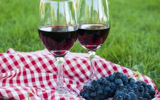 Домашнее вино из винограда «Изабелла»