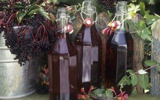 Готовим настойку из черемухи на водке, спирте и самогоне