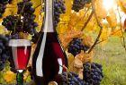 Готовим виноградную наливку: простой рецепт в домашних условиях
