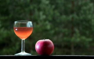 Яблочное вино: популярные рецепты