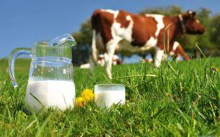 Как правильно очистить самогон молоком