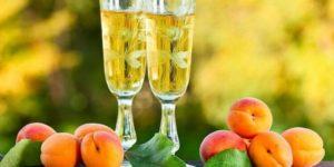 самогон из абрикосов